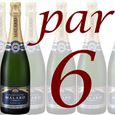 Champagne Malard Brut Excellence x6