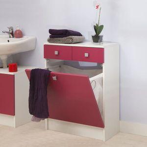 COLONNE - ARMOIRE SDB Bas de salle de bain, 2 tiroirs et bac à linge