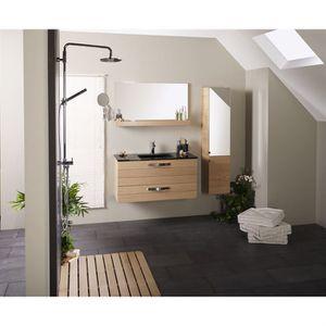 SALLE DE BAIN COMPLETE NORWAY Salle de bain complète meuble vasque + miro