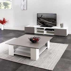 Table basse taupe achat vente table basse taupe pas for Meuble salon taupe