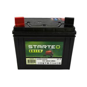batterie pour tondeuse autoportee achat vente batterie pour tondeuse autoportee pas cher. Black Bedroom Furniture Sets. Home Design Ideas