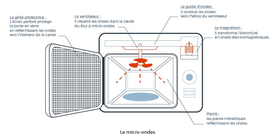 Comment fonctionne le micro-ondes