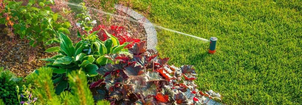 Entretien Du Jardin Comment Arroser Sa Pelouse Cdiscount