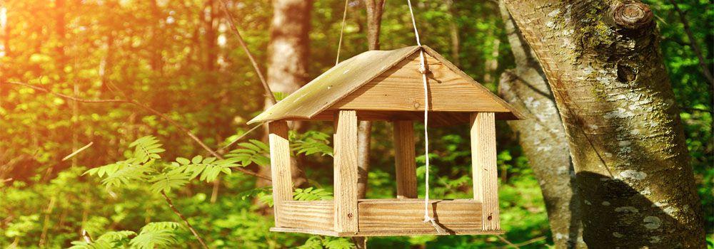 Comment construire une maison pour les oiseaux ventana blog - Les materiaux pour construire une maison ...