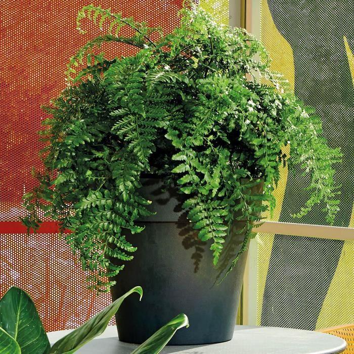 DEROMA Vaso da fiori rotondo Like Anthracite - 22 cm