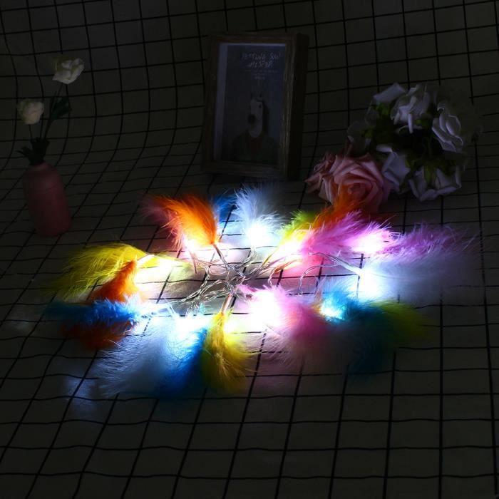 TEMPSA 10LED 1 3M Plume multicolore guirlande lumineuse  pile déco