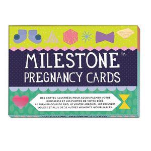 COFFRET CADEAU SOUVENIR MILESTONE CARDS Cartes de Grossesse
