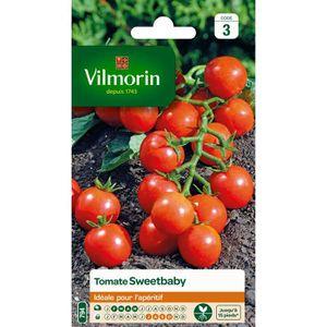 GRAINE - SEMENCE VILMORIN Tomate sweetbaby Sachet de graines
