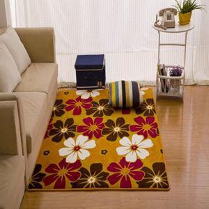 tapis de sol salon tapis de chambre tapis de molleton de corail 140