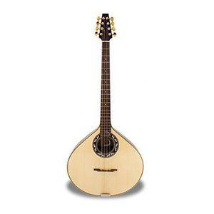 apc b310 guitare classique