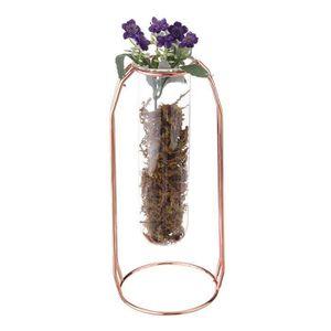 VASE - SOLIFLORE TEMPSA Tube à essai de suspension Fleur d'eau de v