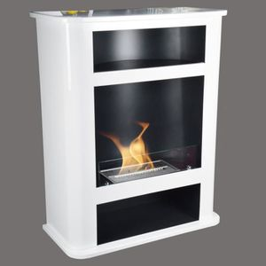 CHEMINÉE CHEMINEE BIOETHANOL STAND MODELE DALLAS COLORIS BL