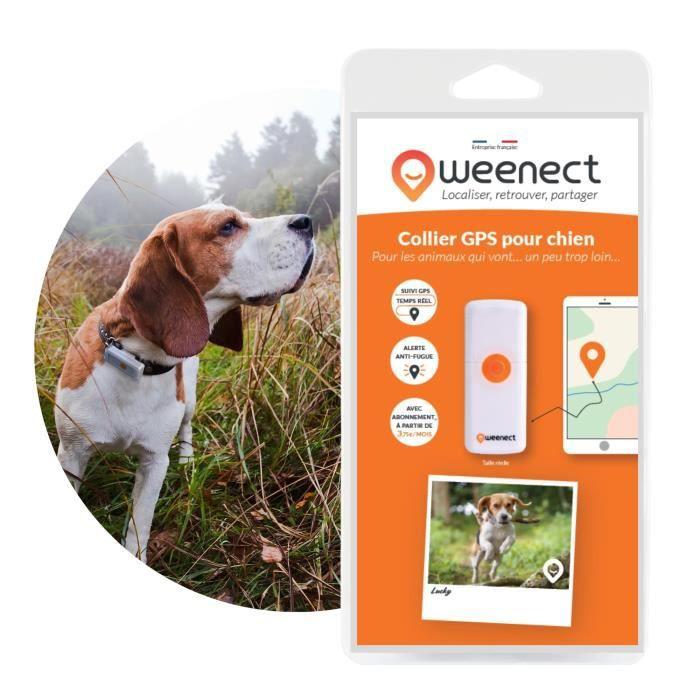 KIT SÉCURITÉ ANIMAUX * Remise de 30€ appliquée au panier * WEENECT Dogs