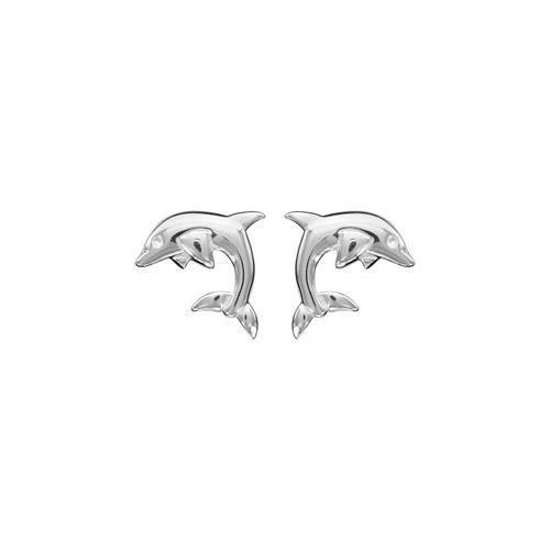 Boucles doreille tige argent dauphins