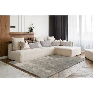 tapis gris doux achat vente pas cher. Black Bedroom Furniture Sets. Home Design Ideas