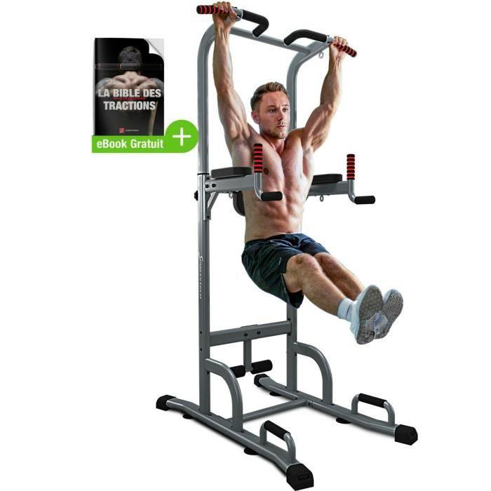 Chaise Romaine Power Station Pt300 Tour Musculation Traction Dips