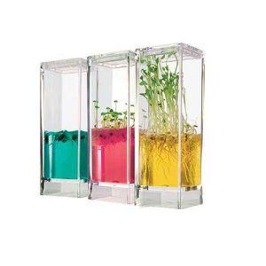 JEU CONSOLE ÉDUCATIVE Jeu scientifique Plantarium laboratoire botanique