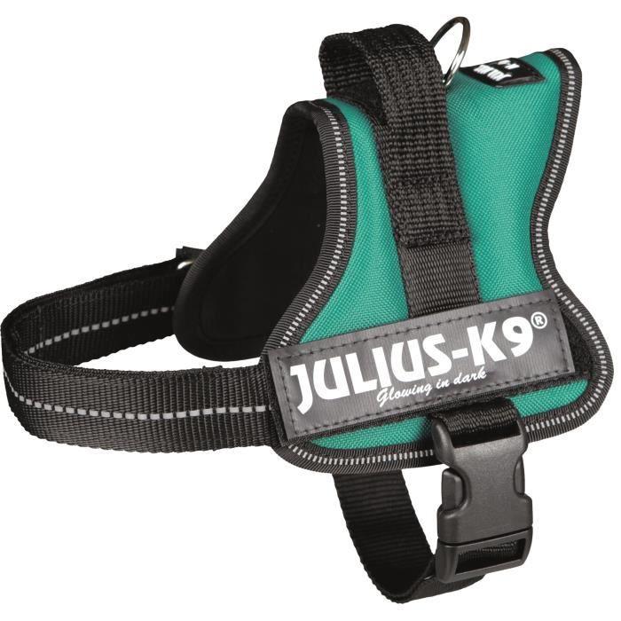 Harnais Power Julius-K9 - Mini - M : 51-67 cm-28 mm - Vert - Pour chien