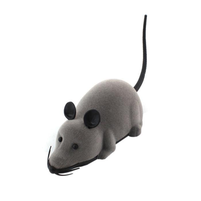 Nouveau Rat Rc De Commande A Distance Pour Chien Chat Jouet D'animal Compagnie Cadeau Nouveaute