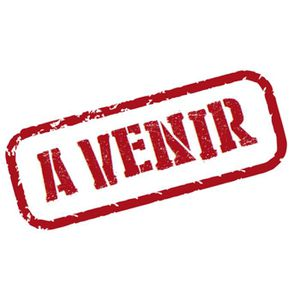 DVD FILM DVD LE PARRAIN 2