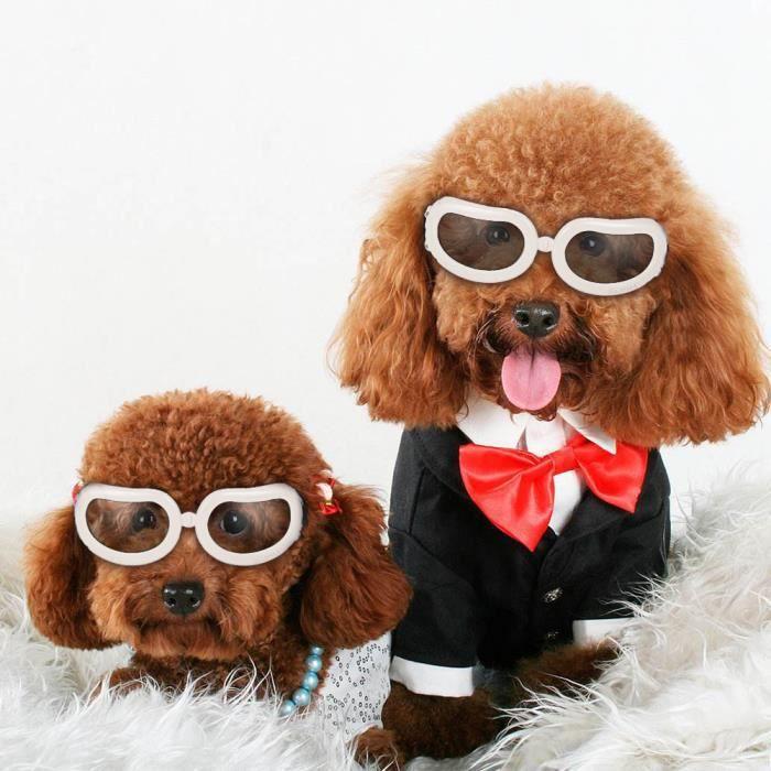 fe901454e417e Lunettes pour chats chiens soleil UV protection yeux Ski Lunettes de  Sécurité Anti-brouillard anti-vent avec sangle Réglable Blanc