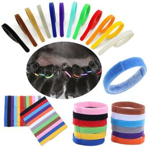 IDENTIFICATION 12 couleurs ID d'identification Colliers Bandes dr