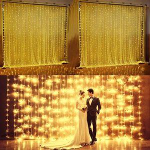 GUIRLANDE LUMINEUSE INT Guirlande lumineuse Rideau de lumière 300 LED Lumi