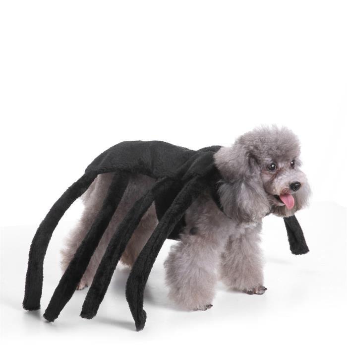 costume pour chien chat d guisement araign e halloween no l achat vente d guisement costume. Black Bedroom Furniture Sets. Home Design Ideas