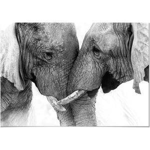 TABLEAU - TOILE Panorama® Tableau Couple Éléphants 50x35cm - Impri