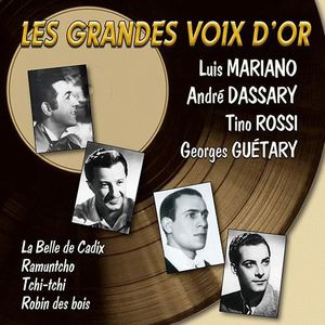 CD VARIÉTÉ INTERNAT CD LES GRANDES VOIX D'OR