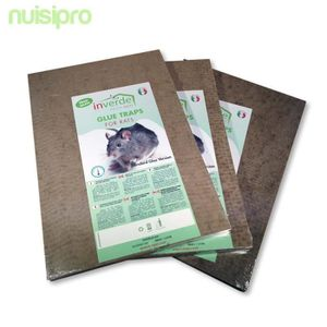 PIÈGE NUISIBLE MAISON Plaques de glu en bois anti souris anti rat lot de