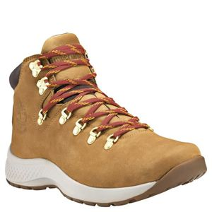 Chaussures Marche Timberland Ledge Low Lthr Gtx 2.0 Brun Hommes pa