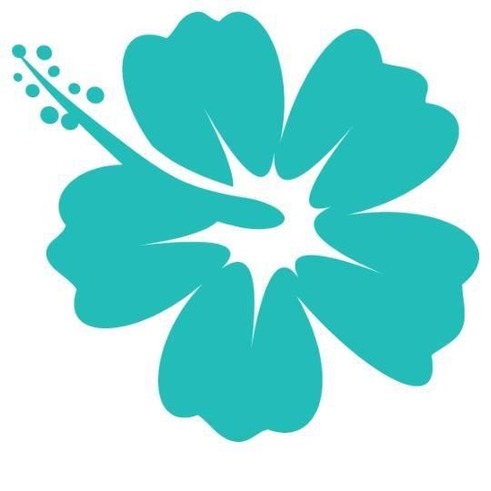 Stickers fleur hibiscus hawai turquoise achat vente - Dessin d hibiscus ...