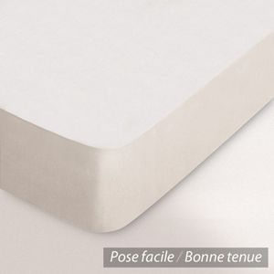 DRAP HOUSSE Drap Housse Coton 140x190 gris clair