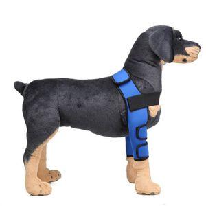 HARNAIS SPORT DE CHIEN 4 pièces chien genouillèrs avec velcro pour protég