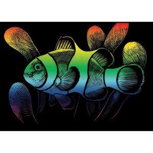 LA FOURMI Carte gratter mini 12,5x17,5cm arc en ciel. Poisson clown