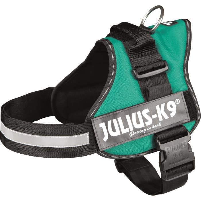 Harnais Power Julius-K9 - 2 - L-XL : 71-96 cm-50 mm - Vert - Pour chien