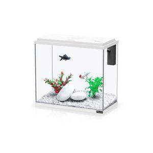 AQUARIUM Aquarium Kit 40 - Aquatlantis