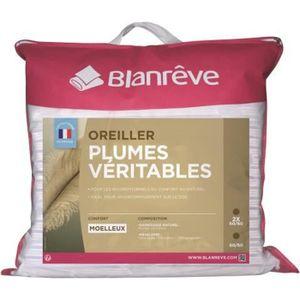 OREILLER BLANREVE Lot de 2 oreillers Plumes - 60x60 cm