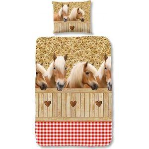HOUSSE DE COUETTE ET TAIES GOOD MORNING Parure de couette Coton HORSES STABBL
