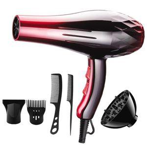 SÈCHE-CHEVEUX TEMPSA 6 PCS 2200W Sèche Cheveux Salon Profession