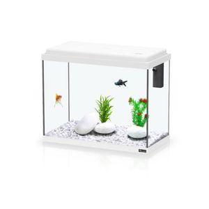 AQUARIUM Aquarium Kit 50 - Aquatlantis