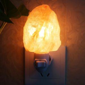 OBJETS LUMINEUX DÉCO  15W Lampe de Sel de l'Himalaya Naturel Veilleuse A