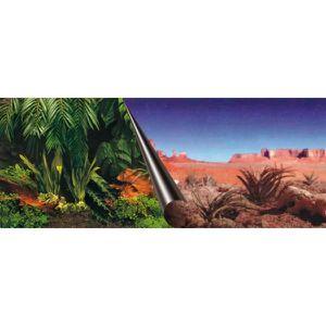 DÉCO ARTIFICIELLE EBI Poster fond d'aquarium - 60 x 30 cm - Imprimé