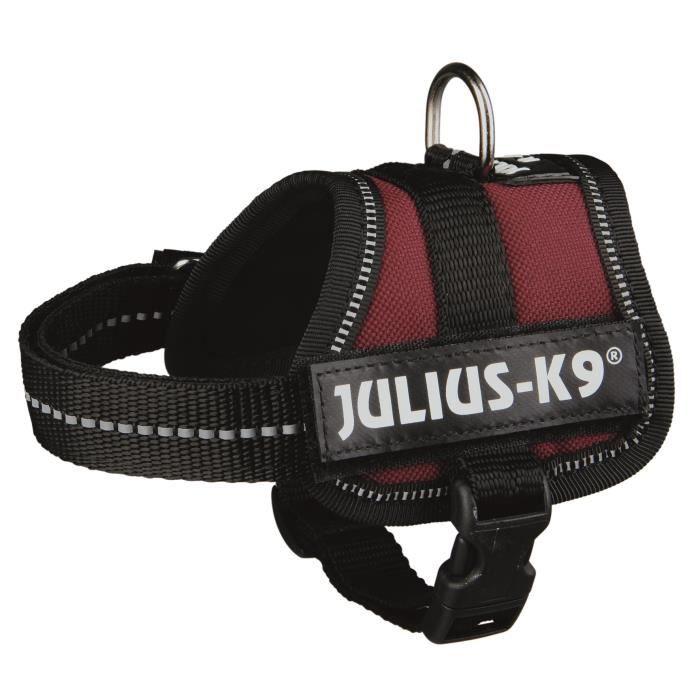 Harnais Power Julius-K9 - Baby 1 - XS : 30-40 cm-18 mm - Bordeaux - Pour chien