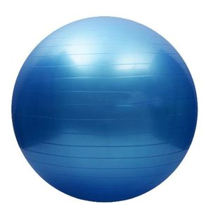 BALLON SUISSE-GYM BALL 65 cm exercice fitness gym Smooth fitness épaissis