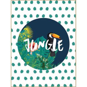 TABLEAU - TOILE Tableau déco glossy Jungle Toucan - 30 x 40 cm