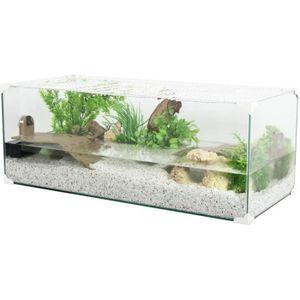 Decoration Aquarium Tortue