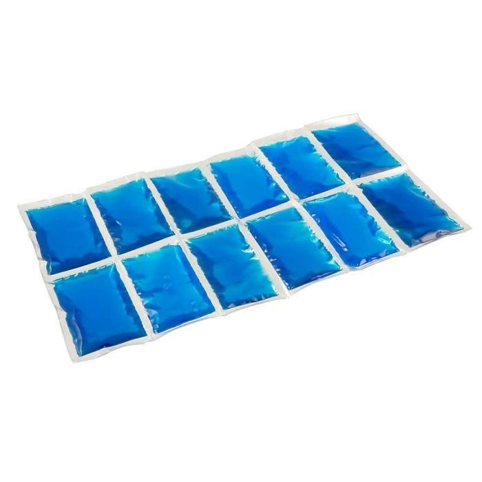 SAC ISOTHERME CAMPINGAZ Accumulateur de froid Flexi Freez'Pack -