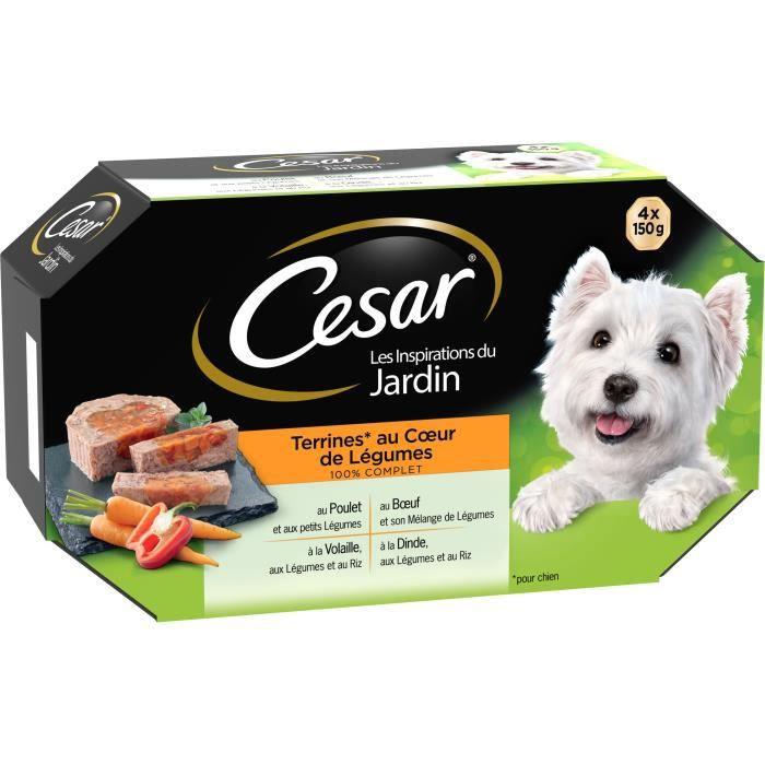 nourriture pour chien cesar achat vente nourriture pour chien cesar pas cher soldes d s. Black Bedroom Furniture Sets. Home Design Ideas